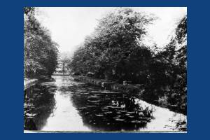 Lake in the grounds of Gate House, Merton High Street