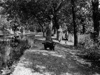 The Francis family walking in the Wandle Watermeads