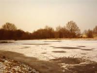 Frozen pond, west side of Mitcham Common, Mitcham