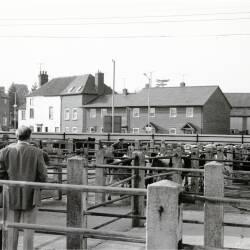 Leominster images
