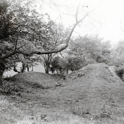 Leintwardine images