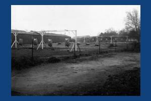 Bayoneting Ground - Army Camp, Wimbledon Common
