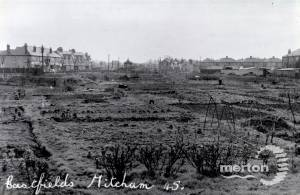 Allotments in the Eastfields area of Mitcham