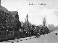 The  Downs, Wimbledon