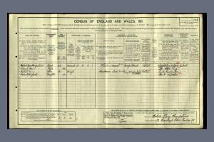 1911 Census -  43 Ranelagh Road, Pimlico