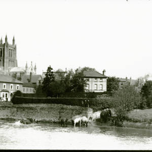 Elephants and camels drinking from the River Wye, 1899