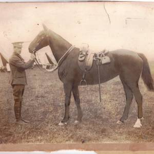 Lance Corporal Edgar Keeley of 1/5 Gloucestershire Regiment with horse, 1915