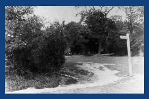 Bunce's meadow: Footpath from Phipps Bridge Road to Morden Road