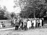 Merton Civic Society Ramble, Morden Hall Park, Morden
