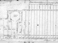 Merton Place: Divisions of the estate for sale at auction