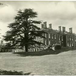 Shobdon images