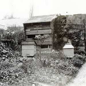 """Bee house """"the home of industry"""""""